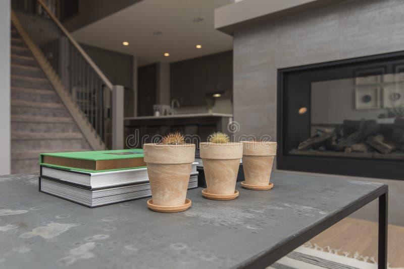 Внутренняя съемка современной комнаты прожития дома с камином и заводами с книгами на таблице стоковая фотография