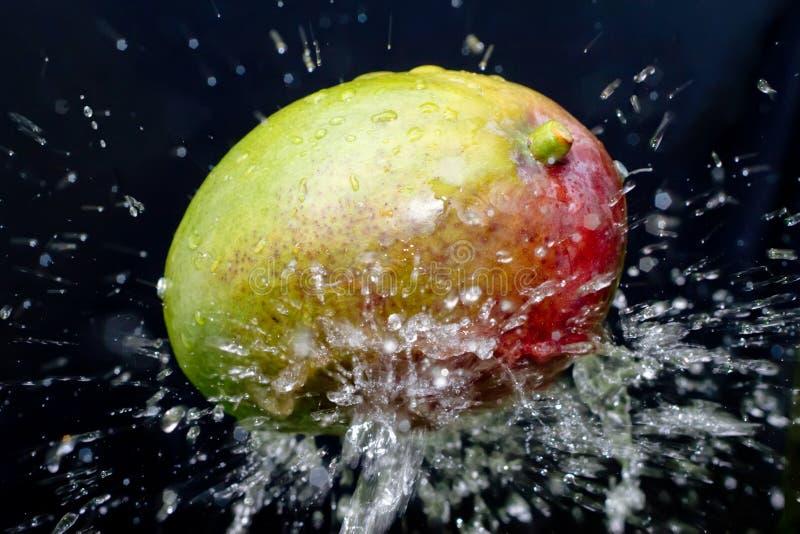 вода выплеска мангоа стоковое изображение