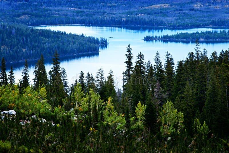 Вода и лес ясности окружающей среды озера высокая гор чисто стоковая фотография