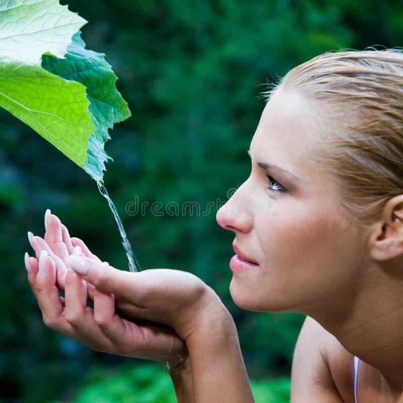 вода красотки естественная чисто стоковые фото