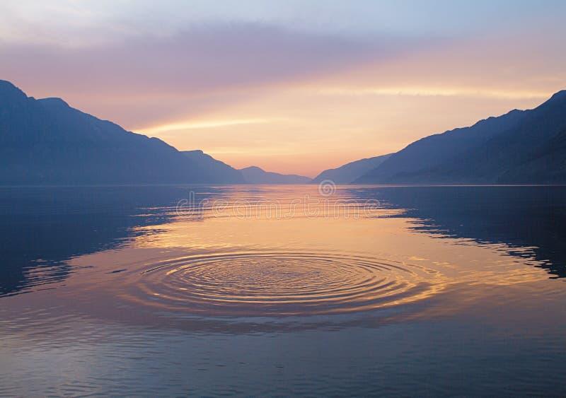 вода кругов стоковые изображения rf