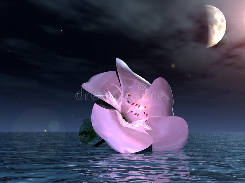 вода ночи цветка 3d бесплатная иллюстрация