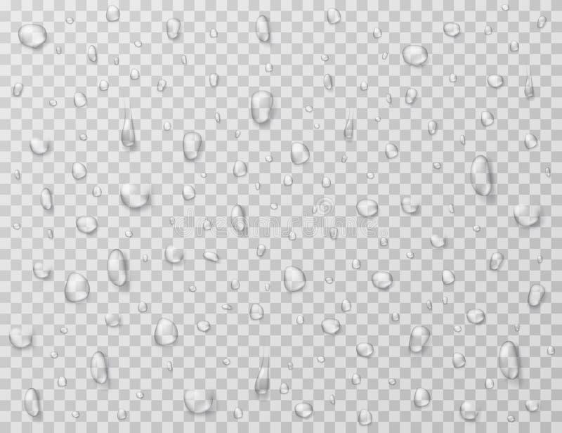 Вода падает изолированный Падение дождя брызгает, капельки на стеклянном прозрачном окне Текстура вектора дождевой капли иллюстрация вектора