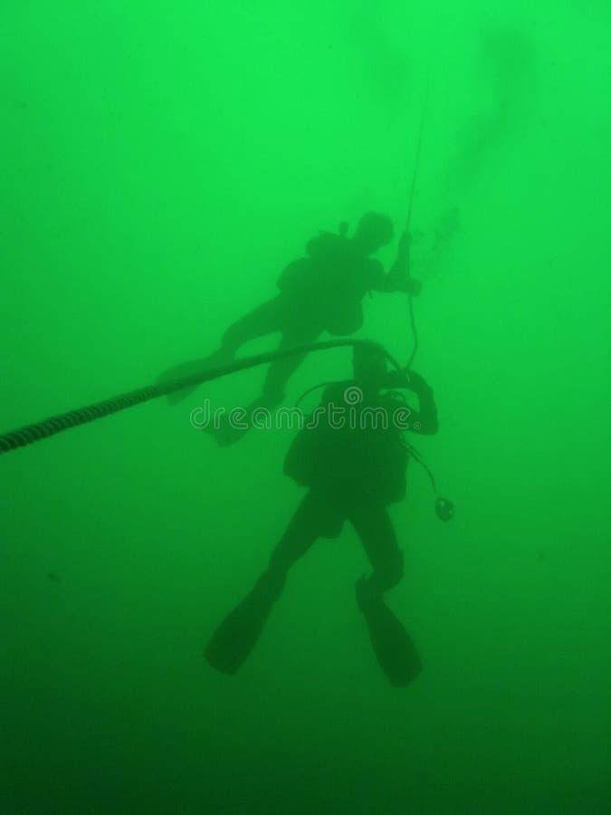 вода скуба водолазов зеленая стоковое изображение rf