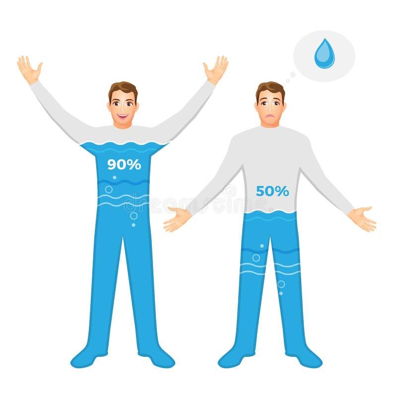 Вода содержит в человеческом теле и опасном обезвоживании иллюстрация вектора