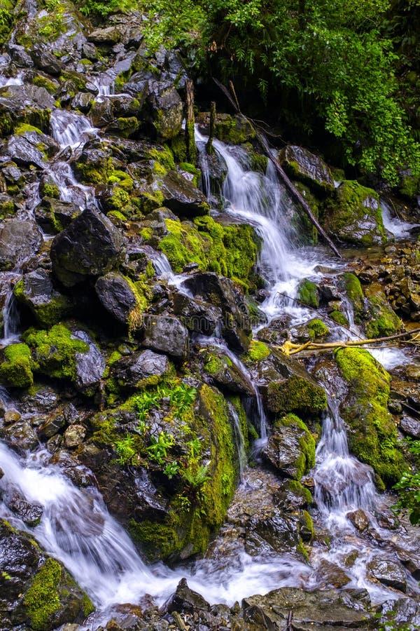 Вода спеша вокруг камней стоковое изображение rf
