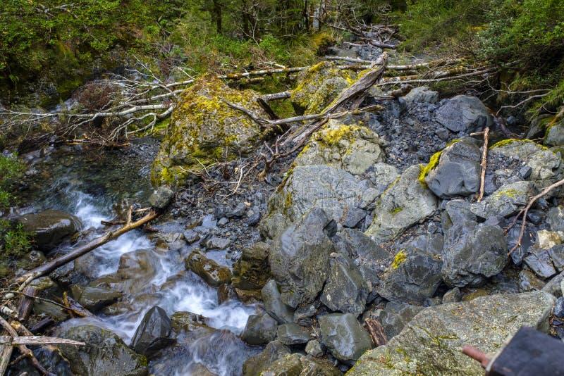 Вода спеша вокруг камней стоковые изображения