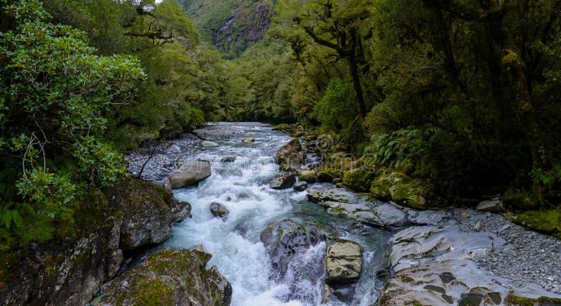 Вода спеша вокруг камней стоковое фото