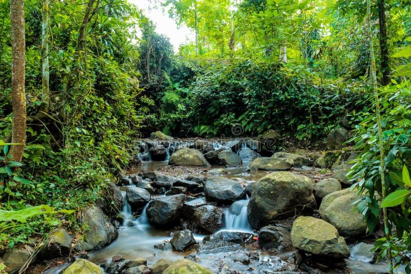 вода Таиланда природы подачи стоковая фотография rf