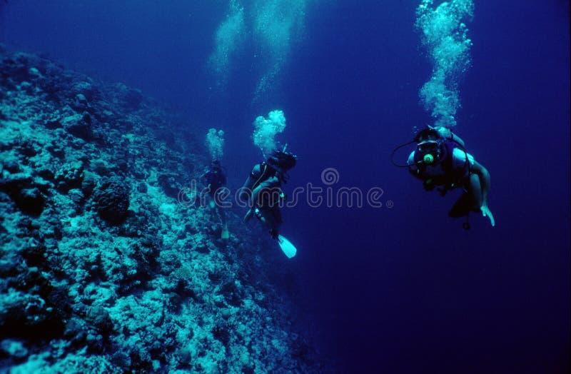 водолазы стоковое фото