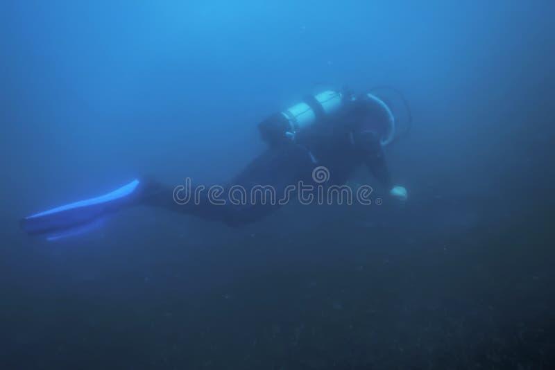 Водолаз акваланга плавая под водой исследует риф и рассматривает морское дно стоковые изображения rf