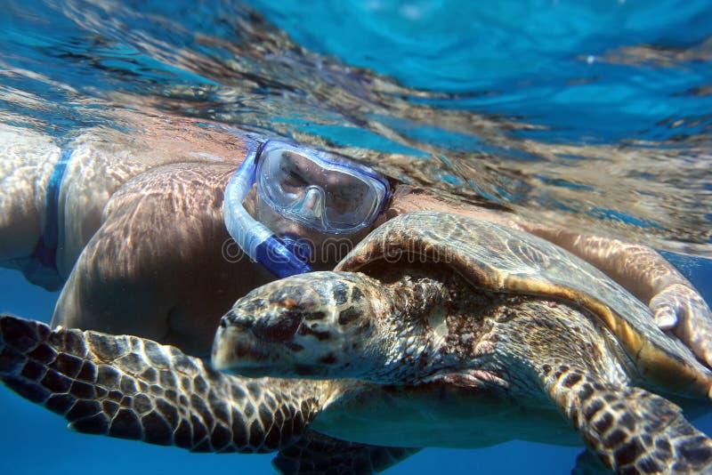 Водолаз обнимает морскую черепаху под водой стоковые изображения