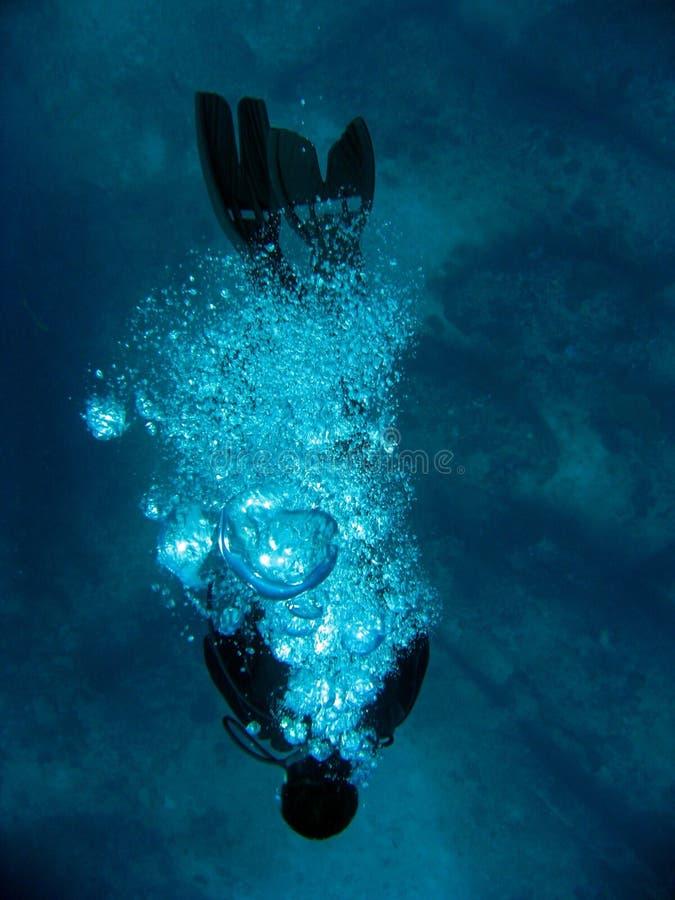 водолаз стоковое изображение rf