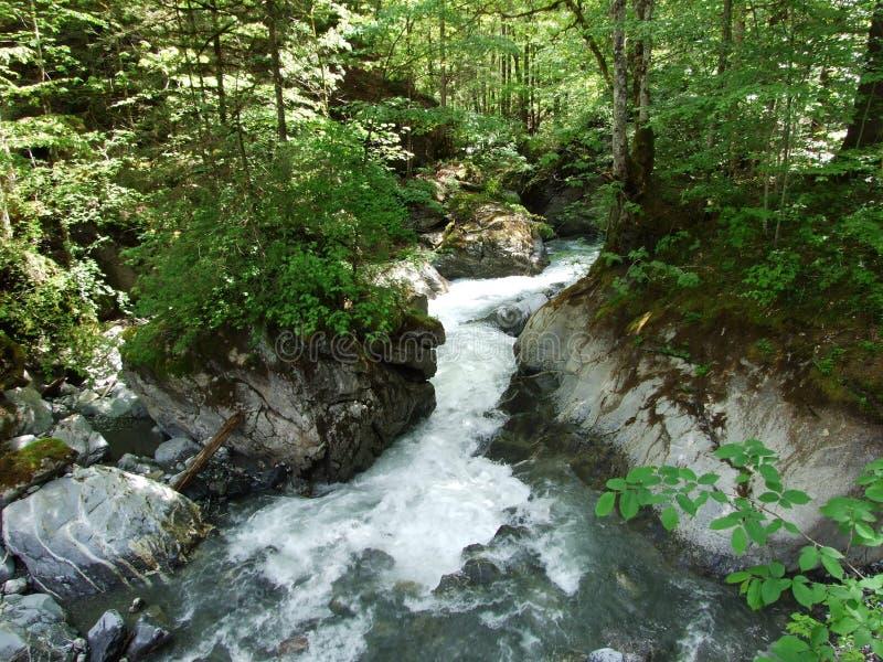 Водопады и каскады в долине Weisstannental стоковое изображение rf