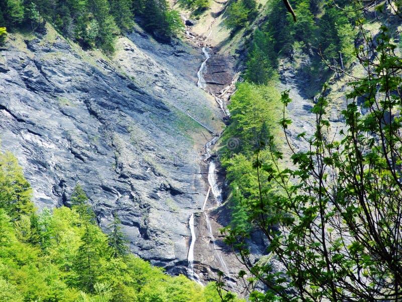 Водопады и каскады в долине Weisstannental стоковая фотография rf