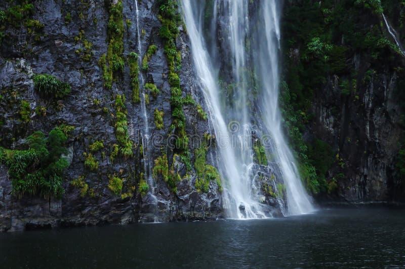 Водопады, каскады, тропический лес, Milford Sound стоковые изображения rf