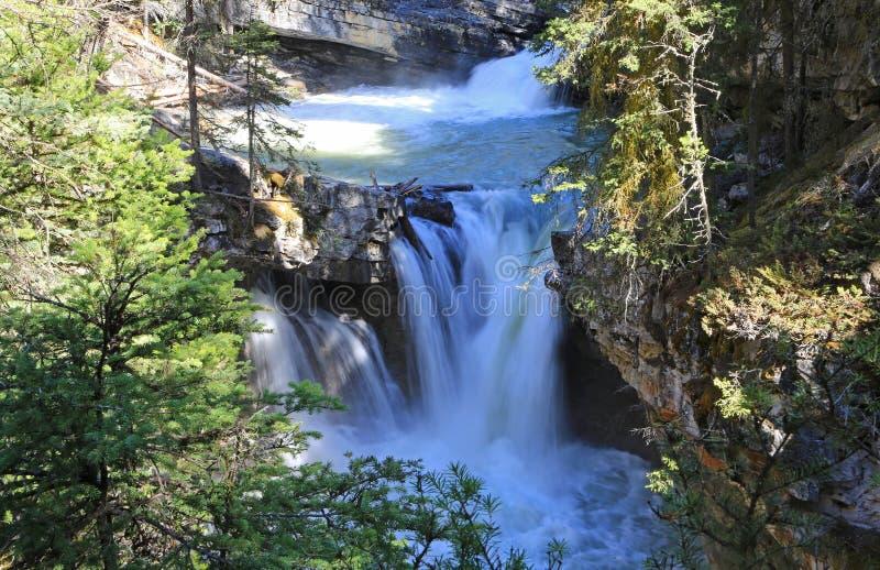 Водопады на заводи Johnston стоковые изображения rf
