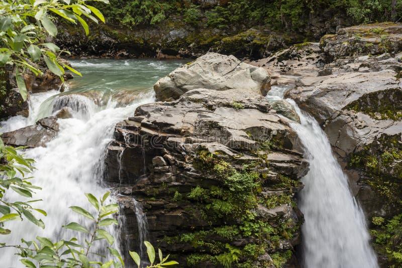 Водопады на Тихом океан северозападе 3 стоковое изображение rf