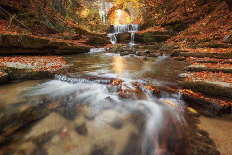 Водопады осени около Sitovo, Пловдива, Болгарии Красивые каскады воды с упаденными желтыми листьями стоковые изображения rf