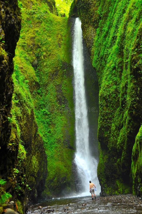 водопады реки oneonta стоковые фотографии rf