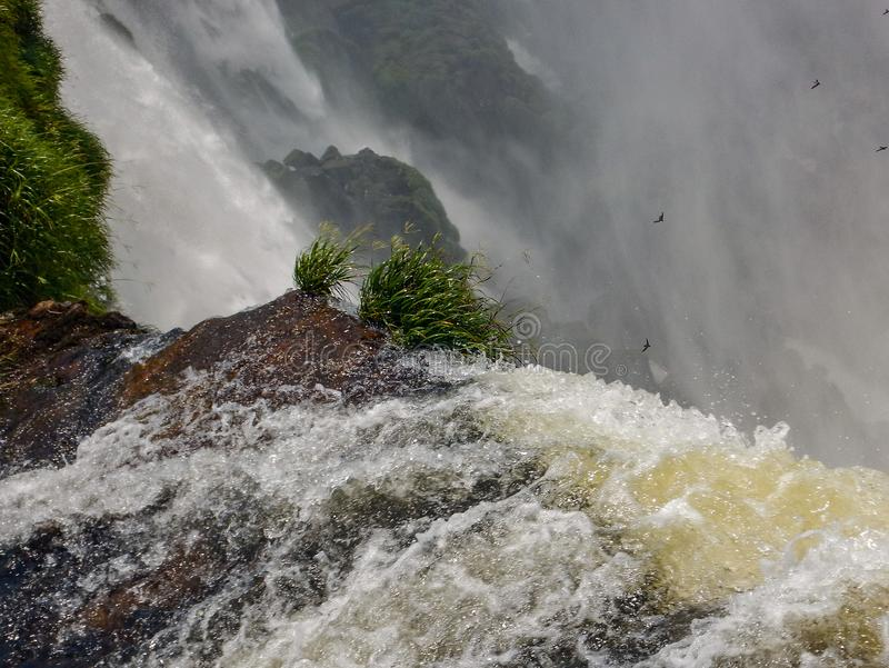 Водопады Точка зрения Игуазу Фаллс полеты ареальных стоковые изображения