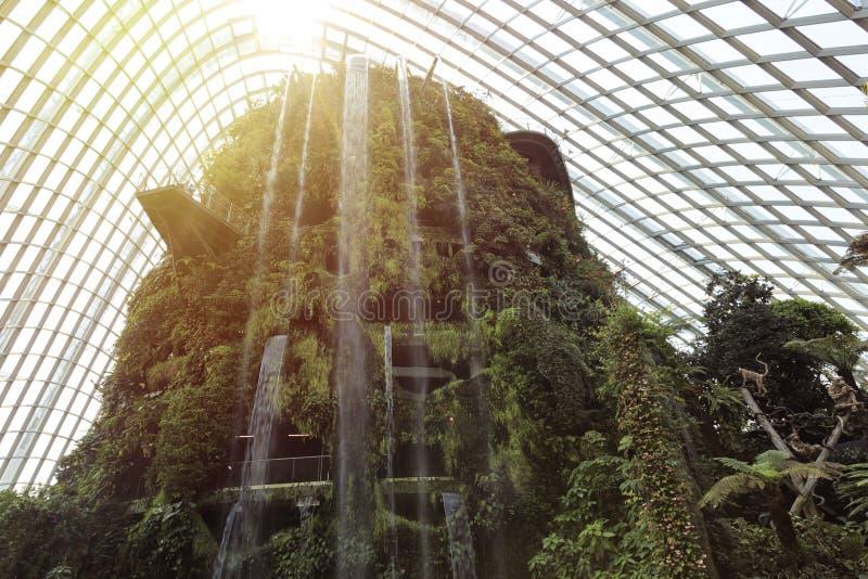 Водопад внутри садов купола леса облака заливом в Сингапуре стоковые фото