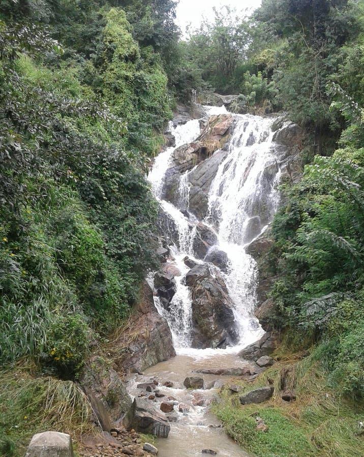 Водопад в верхней стране - Шри-Ланке стоковое фото rf