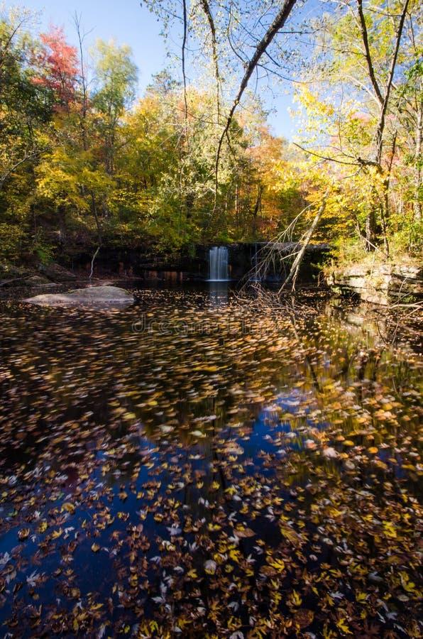 Водопад в запрещать долгую выдержку парка штата во время дневного времени внутри стоковое изображение rf