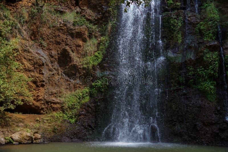 Водопад в лесе Ngare Ndare, Кении стоковая фотография rf