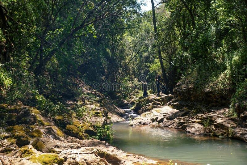 Водопад в лесе Ngare Ndare, Кении стоковое фото