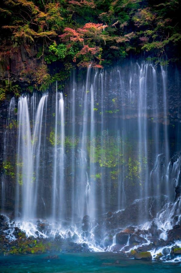 Водопад в осени, Shizuoka Shiraito, Япония стоковые фото