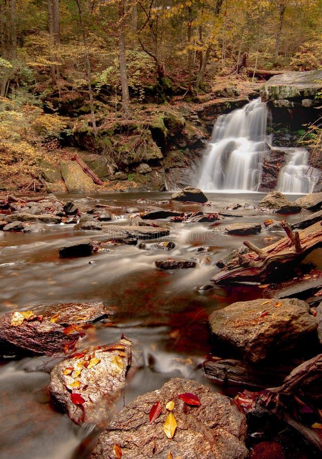 Водопад в парке штата Bish оргии - портрете стоковые изображения rf