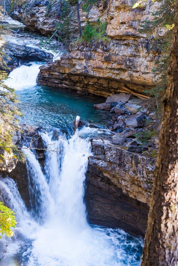 Водопад в сценарном каньоне Johnston, национальном парке Banff, Альберте, Канаде стоковое изображение rf