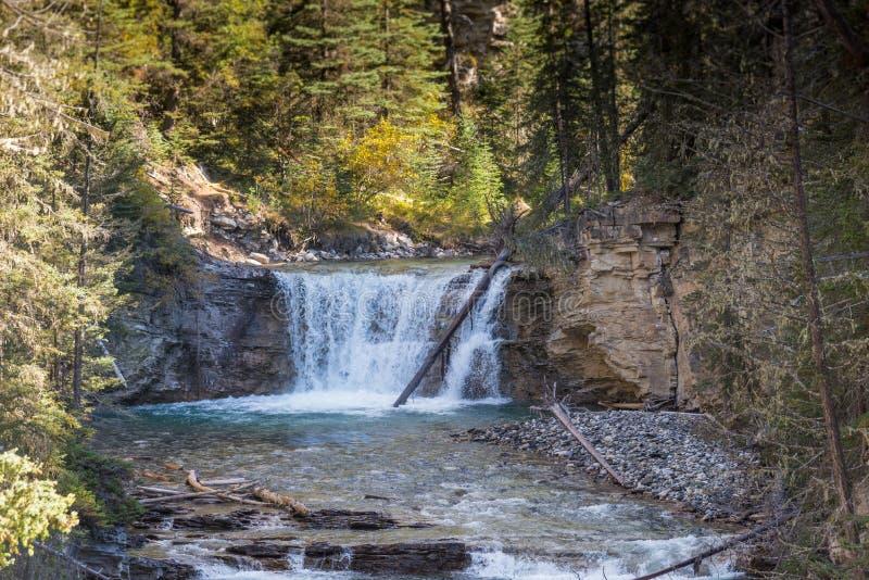 Водопад в сценарном каньоне Johnston, национальном парке Banff, Альберте, Канаде стоковые изображения