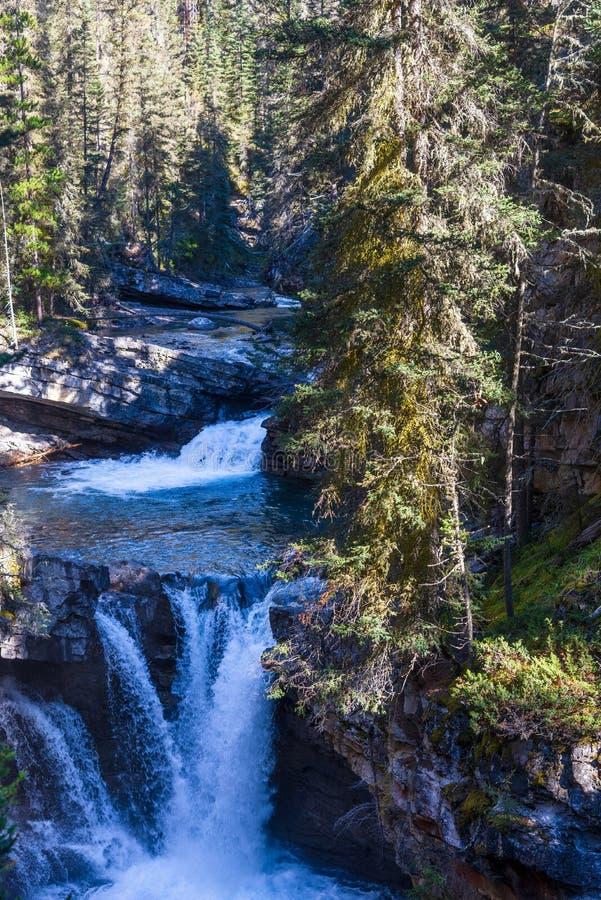 Водопад в сценарном каньоне Johnston, национальном парке Banff, Альберте, Канаде стоковая фотография rf