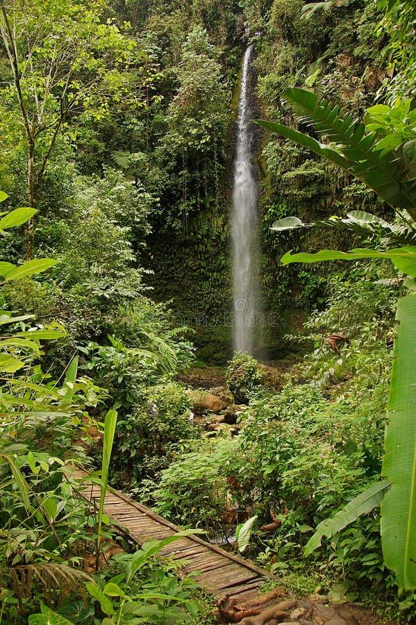 Водопад в тропическом лесе Амазонкы - 2 Pastaza стоковые фотографии rf