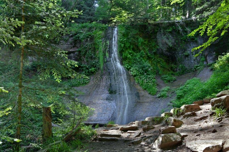 Водопад в черном лесе, Германия Sankenbach стоковое изображение rf