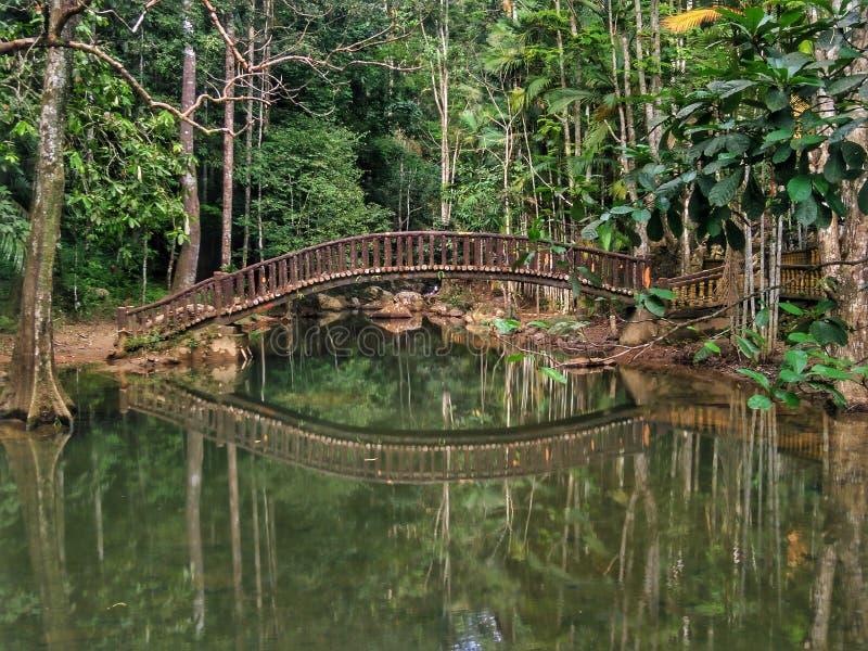 Водопад в Bukit Wang, Jitra, Kedah стоковые изображения