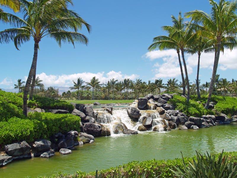 водопад гольфа курса стоковое изображение