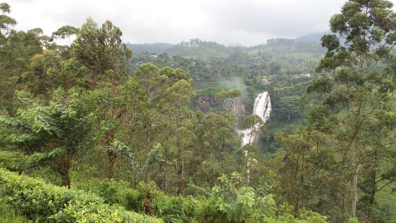 Водопад Девона стоковые фотографии rf