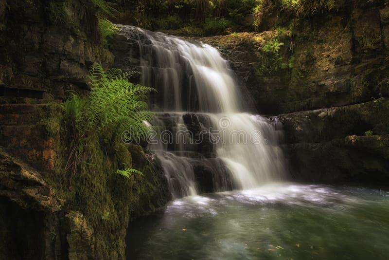 Водопад за утесом Dinas стоковое фото rf