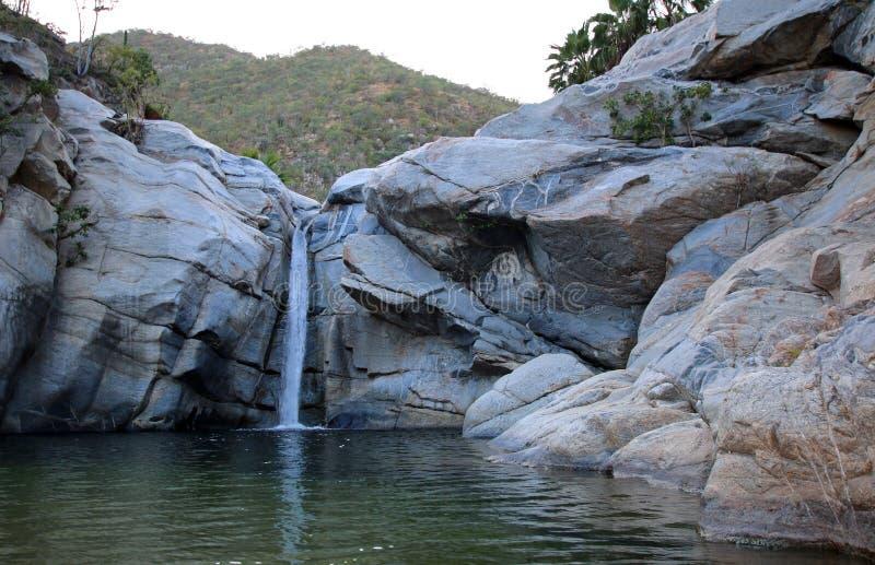 Водопад и естественный бассейн на Sol Del Mayo Cascada на полуострове Нижней Калифорнии в Мексике стоковые фотографии rf