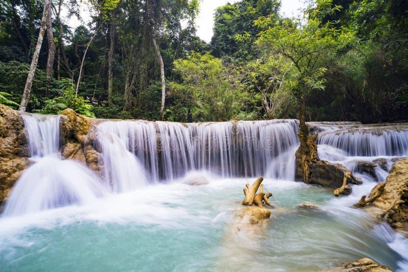 Водопад и небольшой крутой пруд с водой бирюзы Фантастически красивая природа с лесом чистой воды и дикими джунглями стоковые фото