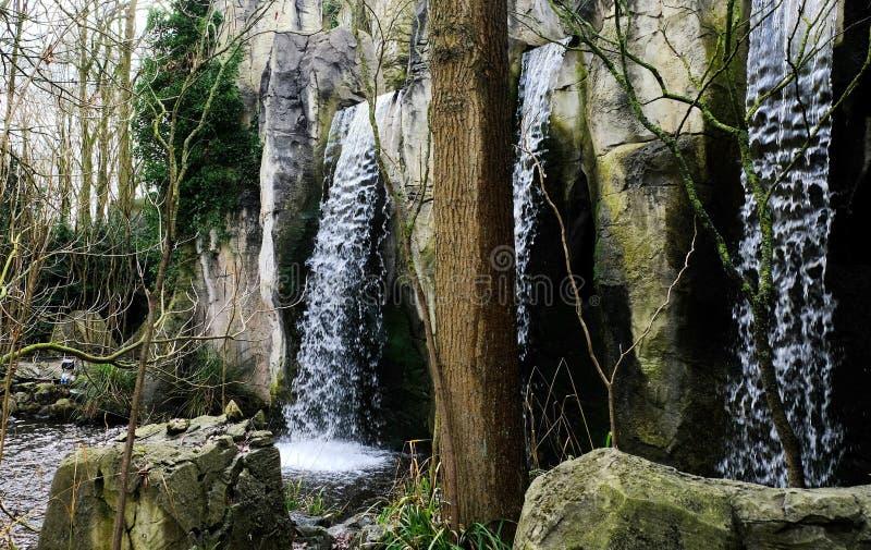 Водопад и утесы леса покрытые с мхом на пасмурный день в феврале 2019 на Efteling в Нидерланд стоковое изображение