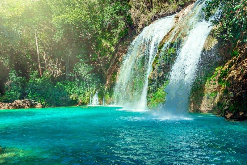 Водопад, каскады Chiflon, Чьяпас, Мексика стоковое фото rf
