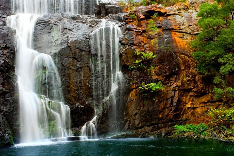 водопад красотки стоковые фото