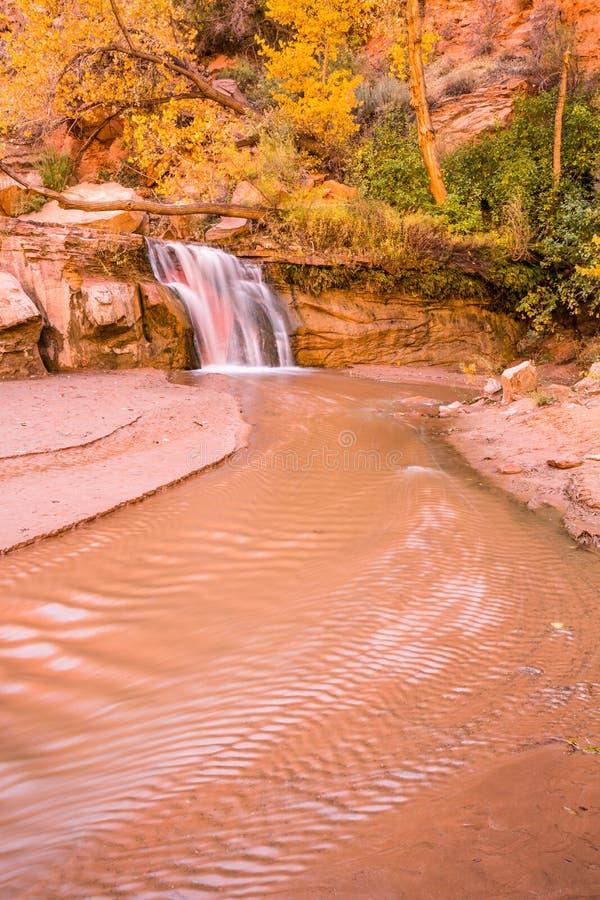 Водопад к отмелому реке под золотыми деревьями хлопока стоковая фотография