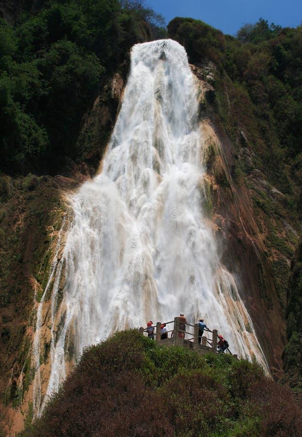 Водопад Мексики Chiapas Chiflon стоковые изображения