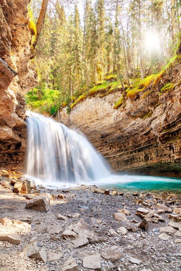 Водопад на каньоне Johnston в национальном парке Альберте Cana Banff стоковая фотография
