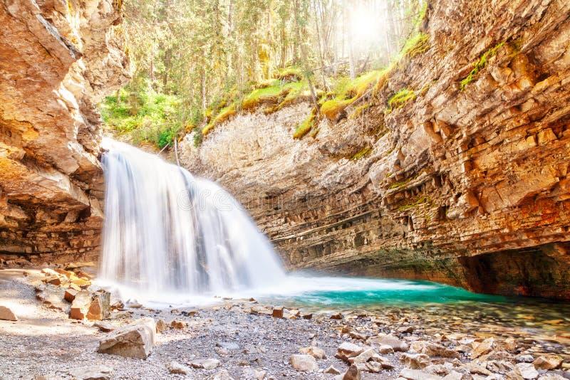 Водопад на каньоне Johnston в национальном парке Альберте Cana Banff стоковые фотографии rf